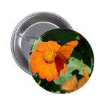 Single orange butterfly on a single orange flower button