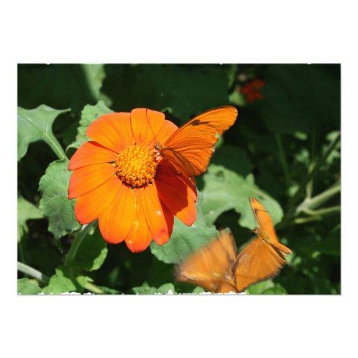 Single orange butterfly on a single orange flower personalized announcement