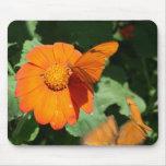 Single orange butterfly on a single orange flower mouse pad