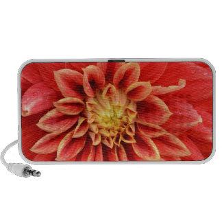 Single orange dahlia flower laptop speakers