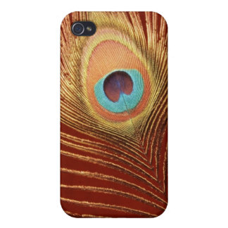 Single Peacock Feather Cases For iPhone 4