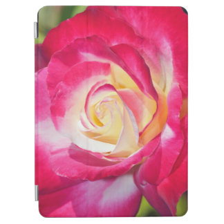 Single pink and white rose iPad air cover