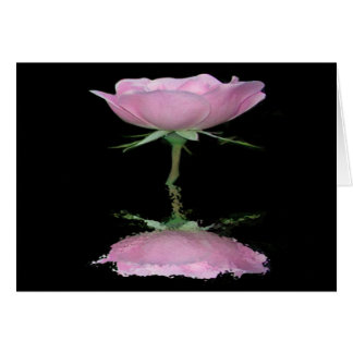 Single Pink Reflected Rose Greeting Cards