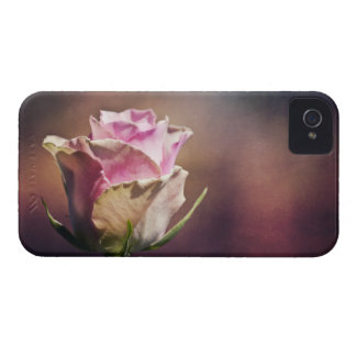 Single Pink Rose iPhone 4 Case-Mate Cases
