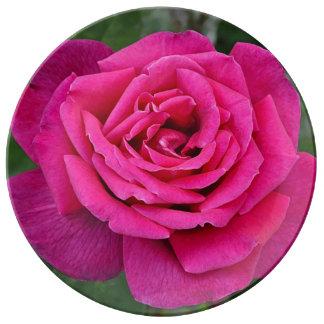 Single pink rose porcelain plates