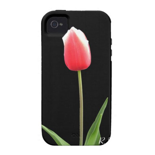 single pink tulip flower vibe iPhone 4 covers