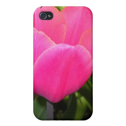 Single Pink Tulip iPhone 4 Cover