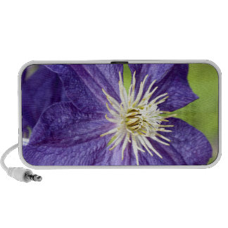 Single purple clematis flower mini speaker