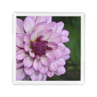 Single purple dahlia acrylic tray