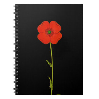 Single red poppy flower on black background notebook