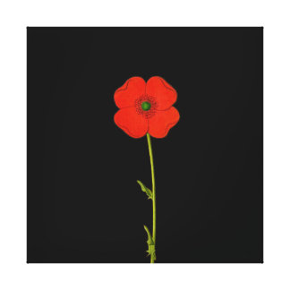 Single red poppy flower on canvas