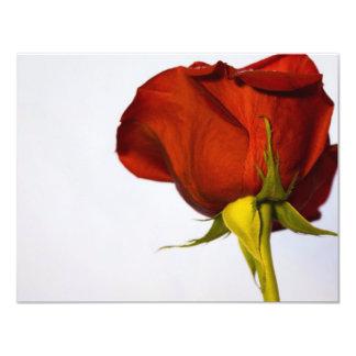 Single Red Rose 11 Cm X 14 Cm Invitation Card