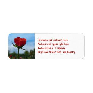 Single Red Rose and Blue Sky Return Address Label