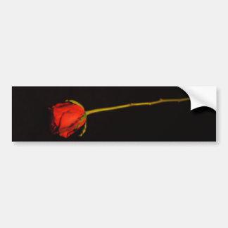 Single Red Rose Bumper Sticker