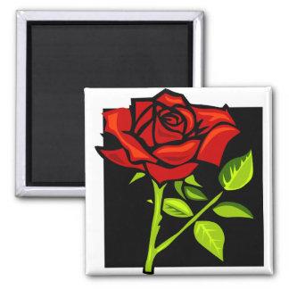 Single Red Rose in Full Bloom Square Magnet