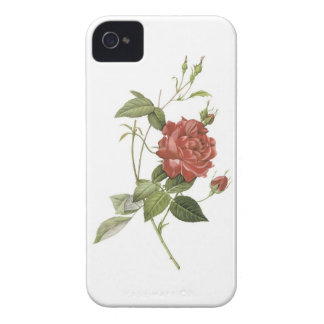 Single Red Rose Iphone 4S Case Case-Mate iPhone 4 Case