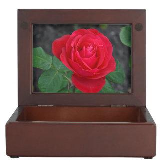 Single red rose keepsake box