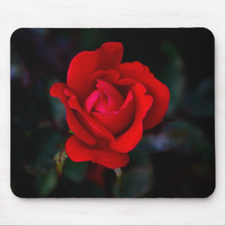 Single Red Rose Mouse Mat