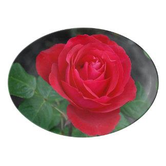 Single red rose porcelain serving platter