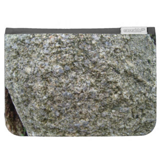 Single Rock with White Lichen in Mountain Landsca Kindle 3G Covers