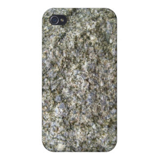 Single Rock with White Lichen in Mountain Landsca Covers For iPhone 4