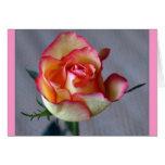 """Single Rose"" (Blank)"