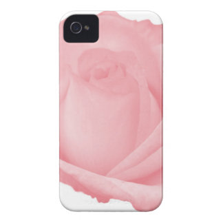 Single Rose iPhone 4/s Case iPhone 4 Covers