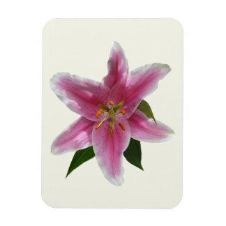 Single Stargazer Lily Flexible Magnets