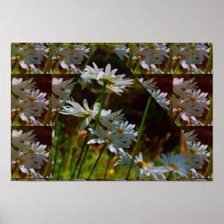 Single Strand White Flowers   Artistic Poster Gift