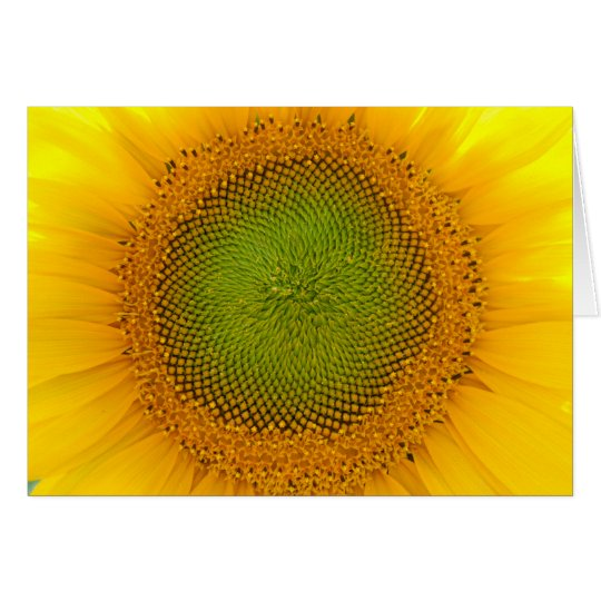 Single sunflower card