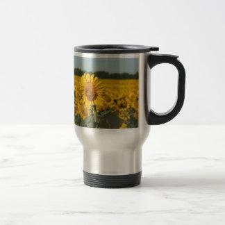 Single Sunflower in a Field of Sunflowers Mug
