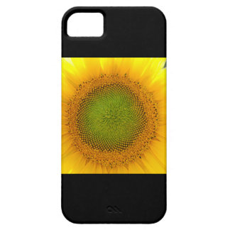 Single sunflower iPhone 5 cover
