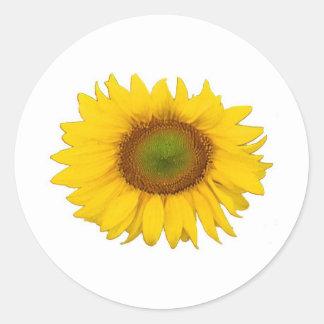 Single Sunflower Yellow Flower Flowers Classic Round Sticker