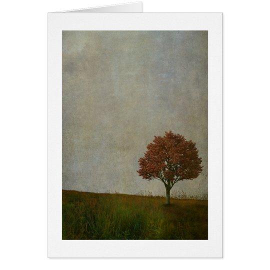 single tree card
