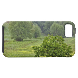 Single tree in agricultural farm field, Tuscany, 2 Case For The iPhone 5