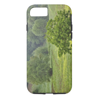 Single tree in agricultural farm field, Tuscany, 2 iPhone 8/7 Case