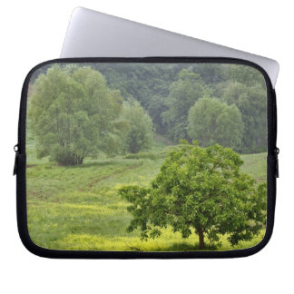 Single tree in agricultural farm field, Tuscany, 2 Laptop Sleeve