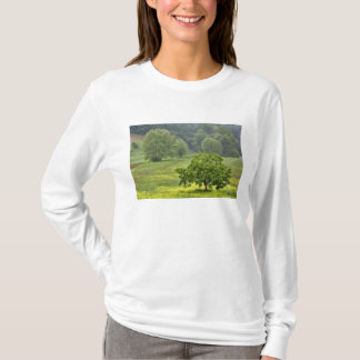 Single tree in agricultural farm field, Tuscany, 2 T-Shirt