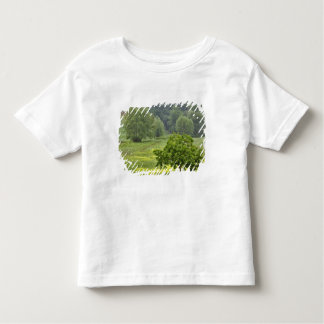 Single tree in agricultural farm field, Tuscany, 2 Toddler T-Shirt