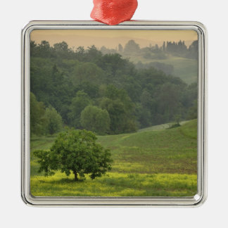 Single tree in agricultural farm field, Tuscany, Christmas Ornament