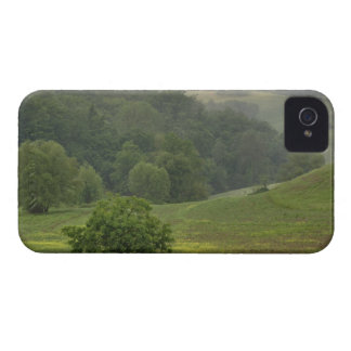 Single tree in agricultural farm field, Tuscany, iPhone 4 Case-Mate Case