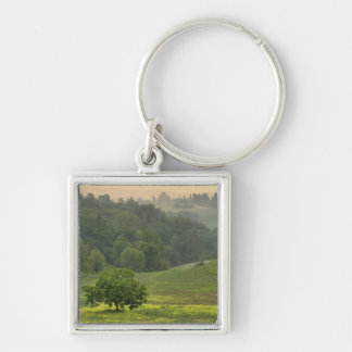 Single tree in agricultural farm field, Tuscany, Key Ring