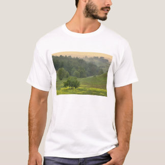 Single tree in agricultural farm field, Tuscany, T-Shirt