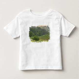 Single tree in agricultural farm field, Tuscany, Toddler T-Shirt