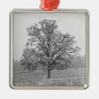 Single tree in field B&W Christmas Ornament