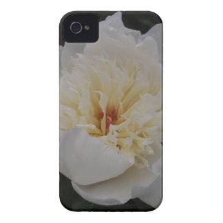 Single White Camellia iPhone 4 Case-Mate Case