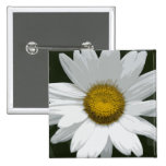 Single White Daisy Pinback Buttons