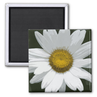 Single White Daisy Square Magnet