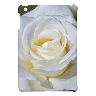 Single white rose blossoms iPad mini cover