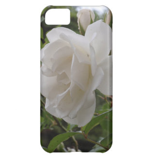 Single White Rose Case For iPhone 5C